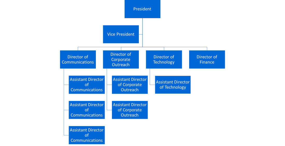 executive board structure